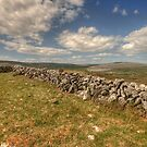 Burren Walls by John Quinn