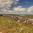 Burren Walls by John Quinn
