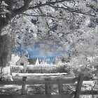 Dream Cottage 2 - Infrared by Ann Garrett