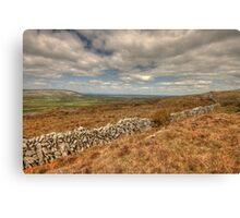 Burren Stone Walls Canvas Print