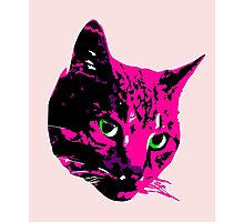 Electric Pink Tabby Face Photographic Print