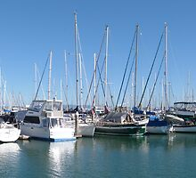 Scarborough Marina, Redcliffe Peninsula, Moreton Bay. Qld. by Rita Blom
