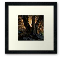 Fire Angel Xmas Tree II Framed Print