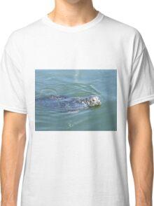 Sleepy seal Classic T-Shirt