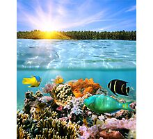 Sunset and colorful underwater marine life Photographic Print