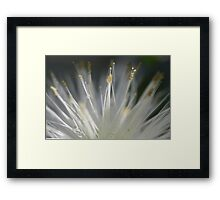 """Fibre Optics"" Framed Print"