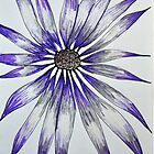 Purple Daisy by MelDesign