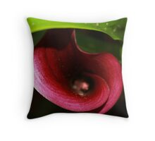 Curves of delight Throw Pillow