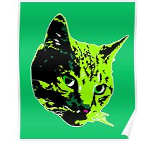 Electric Green Tabby Face Poster