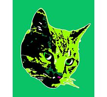 Electric Green Tabby Face Photographic Print
