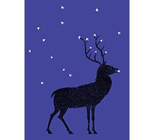 Stag grazing on the stars Photographic Print