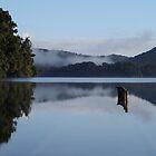 Flooded Jetty - Lake Mapourika NZ by JaseMck