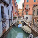 The Wonderful Canals of Venice by Sharon Kavanagh