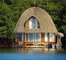 Thatched bungalow over water by Dam - www.seaphotoart.com