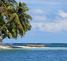 Tropical beach with a dugout canoe by Dam - www.seaphotoart.com