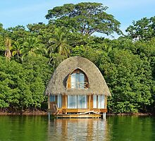Tropical bungalow over water with thatched roof by Dam - www.seaphotoart.com