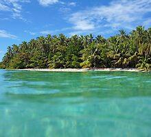 Tropical island shore with luxuriant vegetation by Dam - www.seaphotoart.com