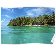 Tropical island shore with luxuriant vegetation Poster