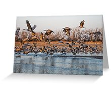 The Migration Greeting Card