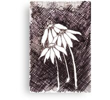 Daisies Black ink sketch Canvas Print
