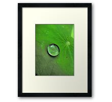 Droplet Framed Print