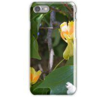 Maple Tree Flowers iPhone Case/Skin