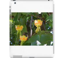 Maple Tree Flowers iPad Case/Skin