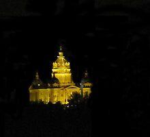 Capital In The Night by Linda Miller Gesualdo