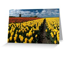 Out In the Tulip Fields Greeting Card