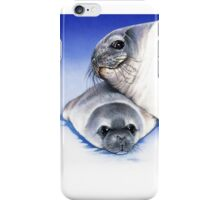weddell seal and pup iPhone Case/Skin