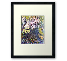 Caught by the Hedgerow Framed Print
