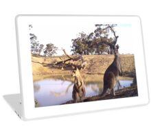 Standing Kangaroos Laptop Skin