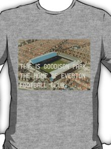 Everton Football Club T-Shirt