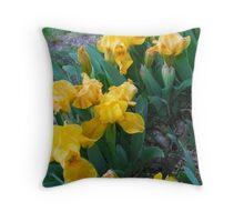 Yellow Iris in Concert Throw Pillow