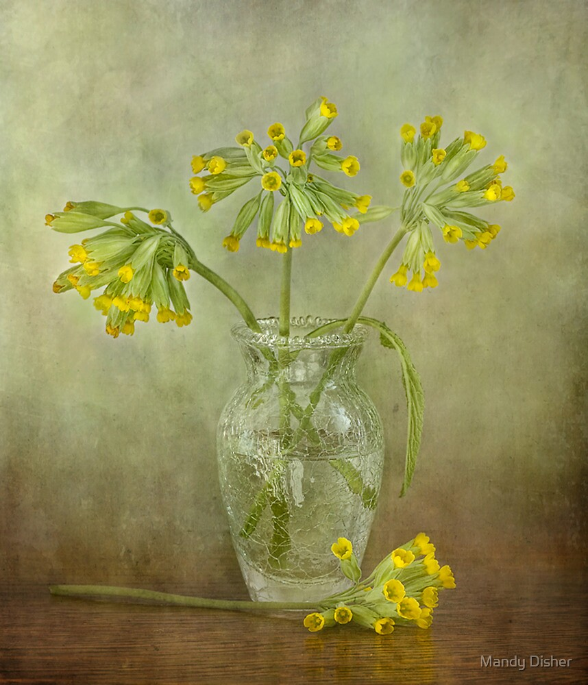Cowslips by Mandy Disher