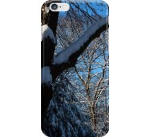 Blue Skies After Snow iPhone Case/Skin