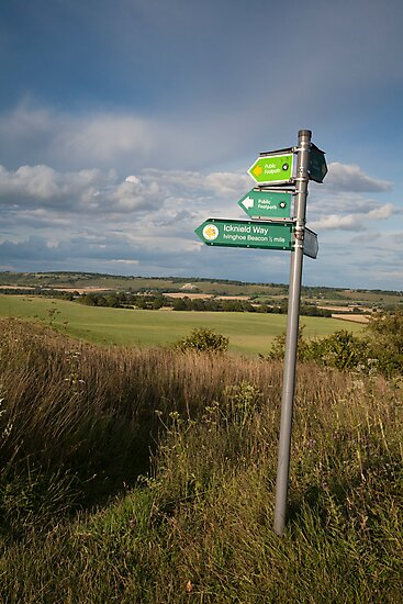 The Whipsnade Lion and Icknield Way by hinomaru