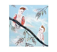Major Mitchell's Cockatoos by Linda Callaghan