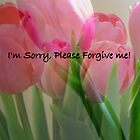 I'm Sorry, Please Forgive Me by Debbie Meyers