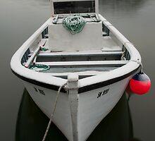Quidi Vidi Boat by Robert Baker