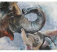 mother elephant with her calf Photographic Print