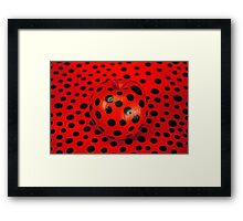 Fruit Insect: Ladybird Framed Print
