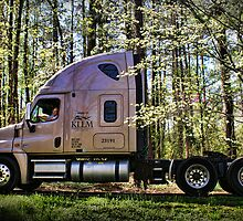 """One Hard Working Man With His New Truck"" by Melinda Stewart Page"
