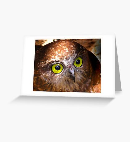 Here's looking at you Babe Greeting Card