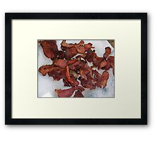 """Bacon!!!!!""   ""I Smell Bacon!!!!!""................. Framed Print"