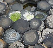 Giant's Causeway stones by treeblack