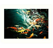 Fish in the pond. Art Print