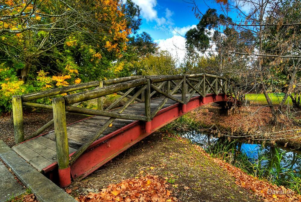 The Crossing - Southern Highlands NSW Australia by DavidIori