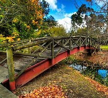 The Crossing - Southern Highlands NSW Australia by DavidIori
