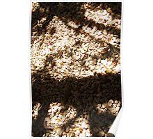 gravel shade Poster
